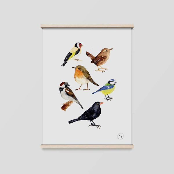 Art Print Gartenvögel • DIN A4 • Illustration
