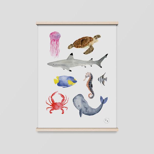 poster meerestiere a4|günstig online kaufen|illustration